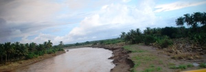 desvorda río