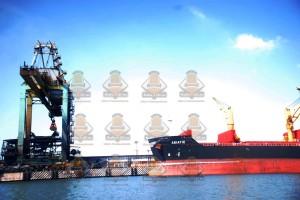 embarcaciones asiáticas predominan en el puerto